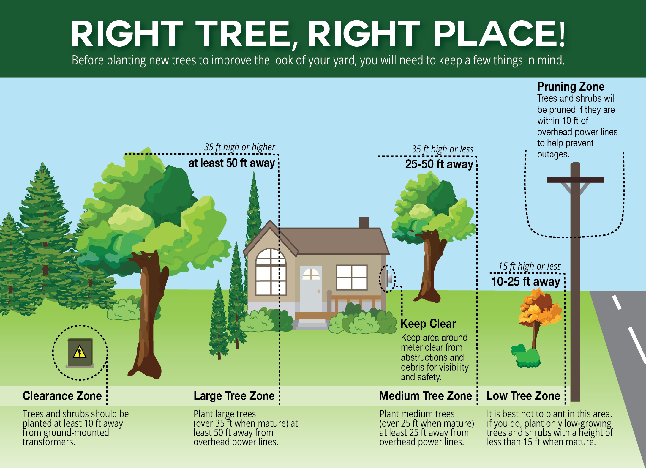 Right-Tree-Right-Place-02